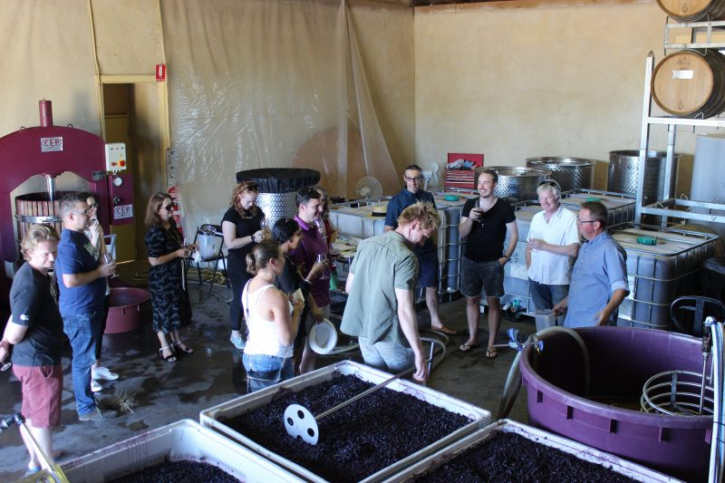 Winemaker for a Day