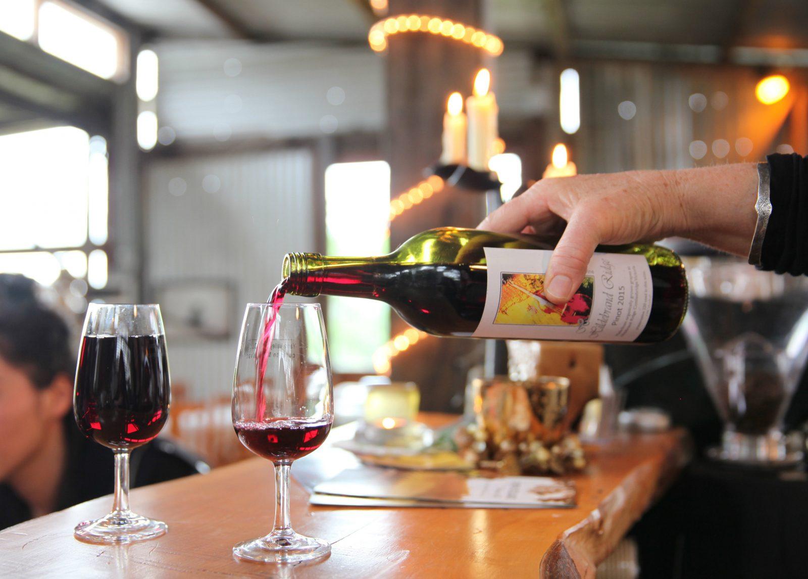 Hildebrand Ridge Organic Vineyard wine tasting
