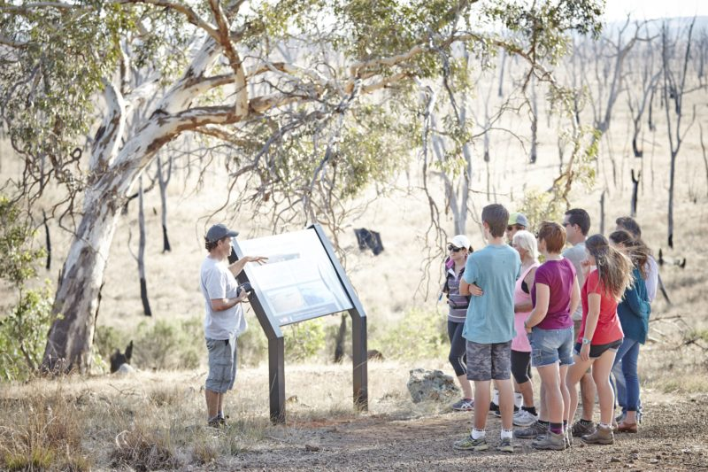 Reading interpretive signs around the Winton Wetlands