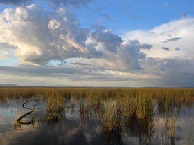 Property of Winton Wetlands