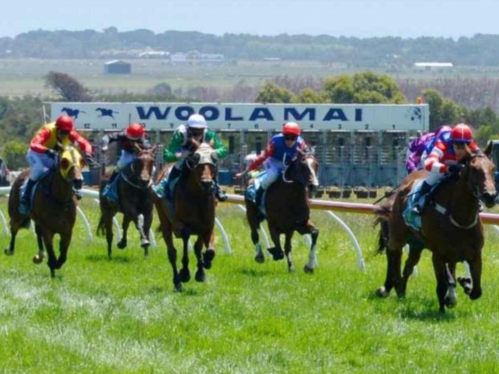 Woolamai Country Horse Racing