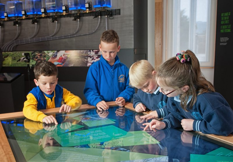 School Programs at the Y Water Discovery Centre