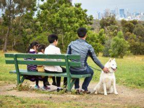 Yarra Bend Park