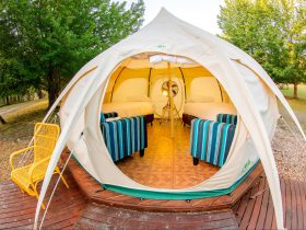 Electic Family Belle Tent