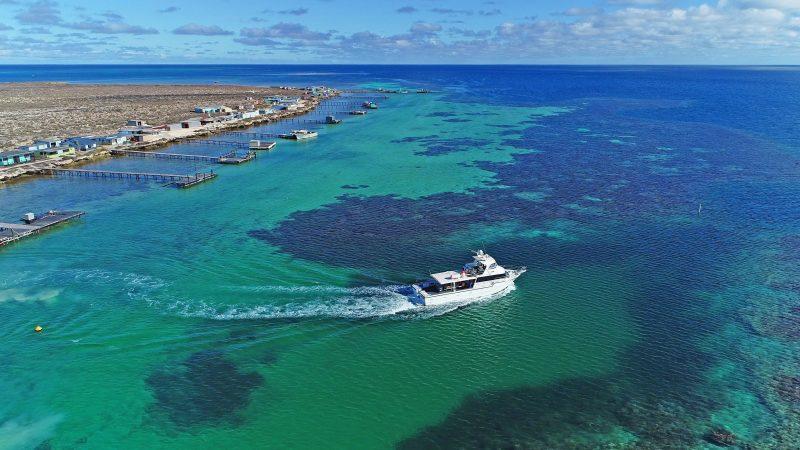 Abrolhos Adventures, Geraldton, Western Australia