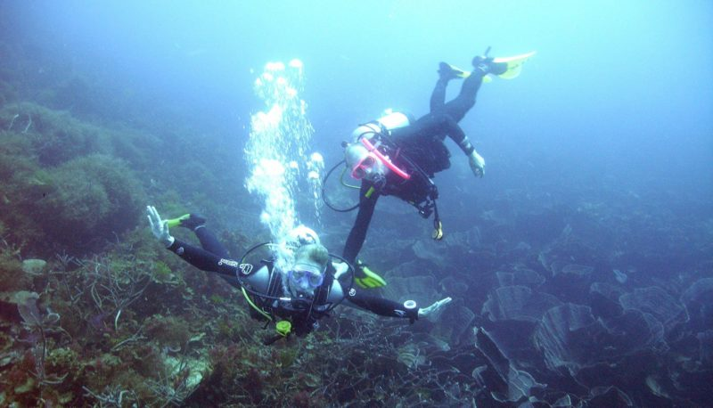 Abrolhos Islands, Geraldton, Western Australia