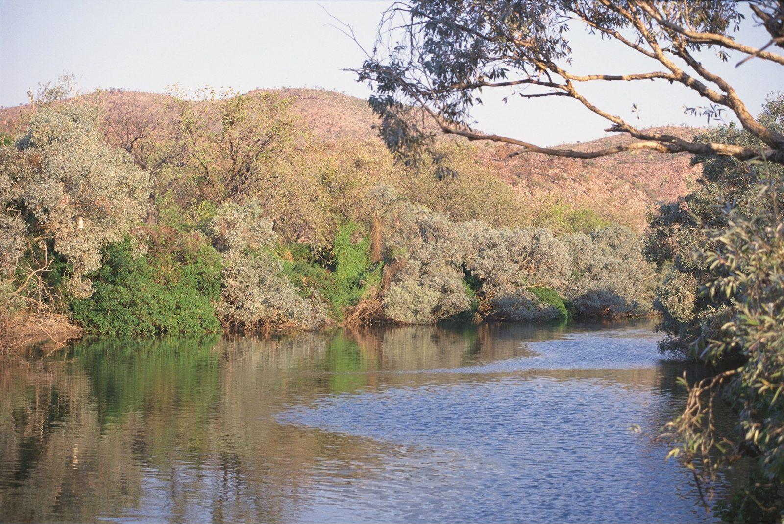 Alligator Hole, Western Australia