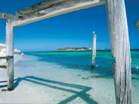 Hamelin Bay, near Augusta