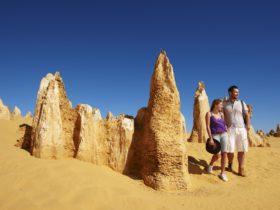 Aussie Perth Tours, Perth, Western Australia