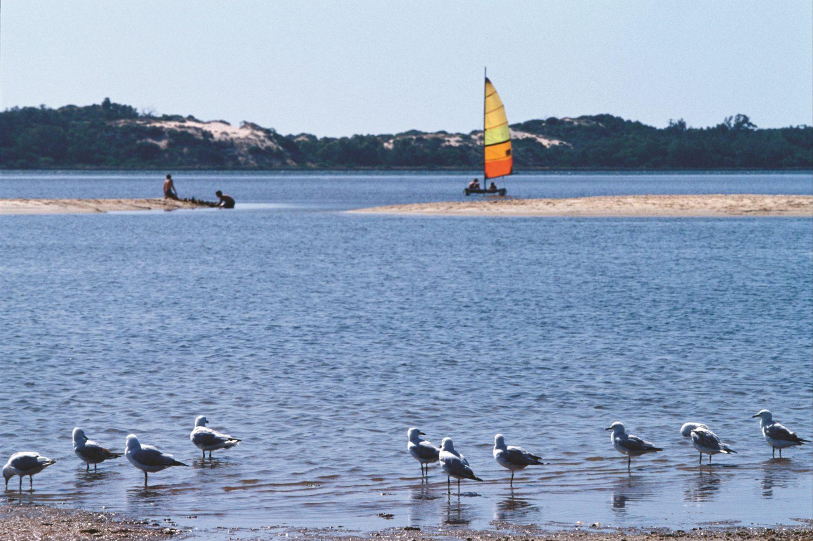 Australind, Western Australia