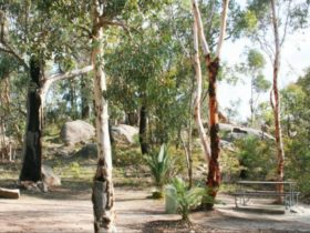 Avon Valley National Park, Mundaring, Western Australia