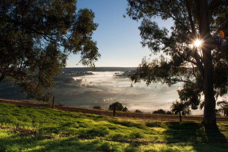 Balingup Heights Hilltop Forest Cottages, Balingup, Western Australia