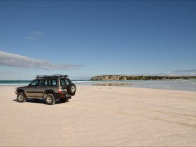 Beach and Bush Tours, Perth, Western Australia