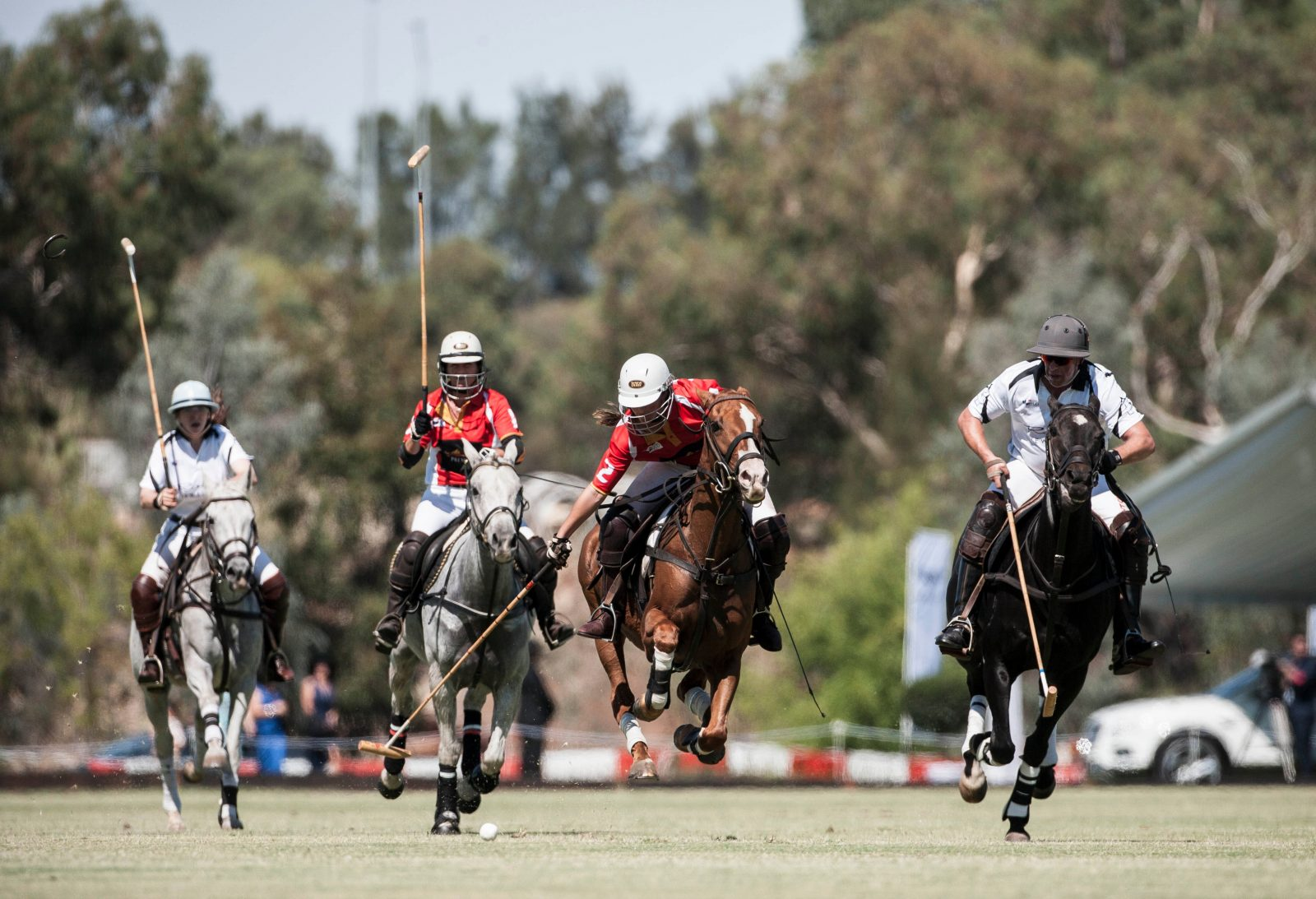 Bentley Polo In The Valley 2019, Swan Valley, Western Australia