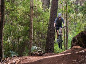 Riding Big Pine