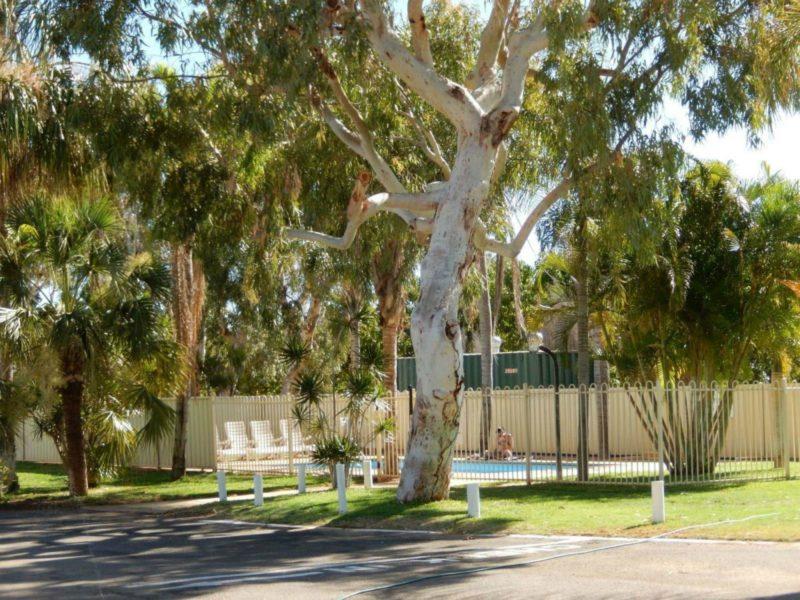 BIG4 Plantation Caravan Park, Carnarvon, Western Australia