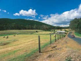 Blackwood River Tourist Drive, Balingup, Western Australia
