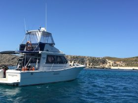 Boutique Cruise, Fremantle, Western Australia