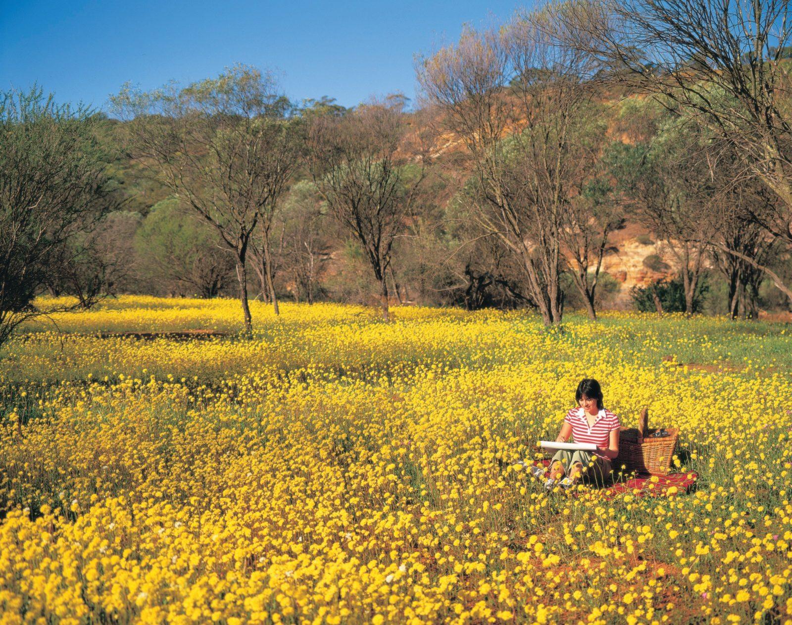 Coalseam National Park, Western Australia