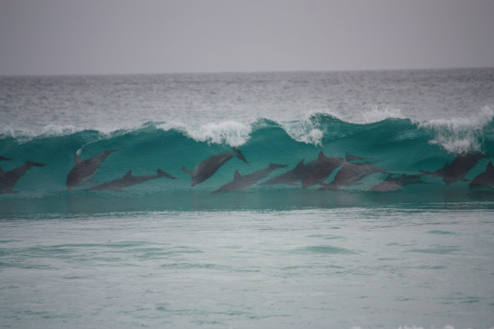 Bremer Bay Caravan Park, Bremer Bay, Western Australia