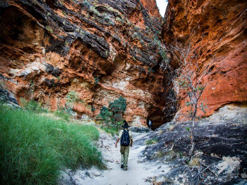 Bungle Bungle Guided Tours, Purnululu, Western Australia