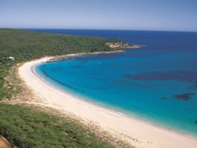 Bunker Bay, Dunsborough, Western Australia