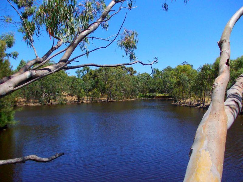 Bushy Lake Chalets, Margaret River, Western Australia