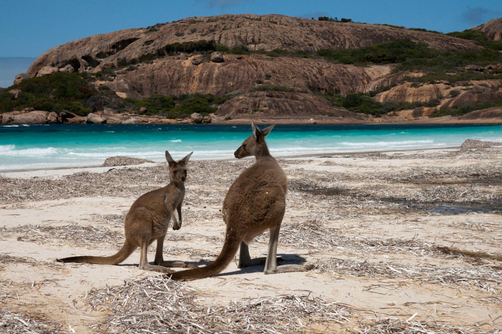 Cape Le Grand National Park, Esperance, Western Australia