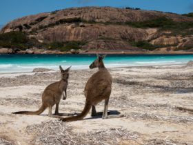 Cape Le Grand National Park, Esperance, Western Australia