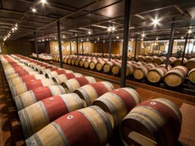 Cape Mentelle Vineyards, Margaret River, Western Australia