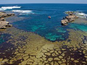 Cathedral Rocks Viewing Platform, Rottnest Island, Western Australia
