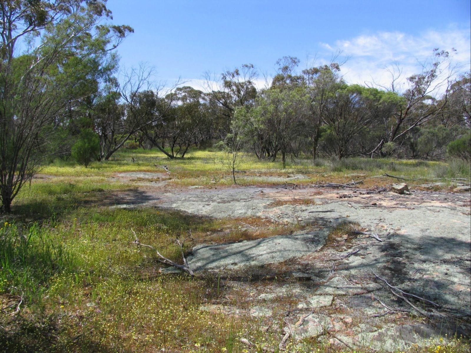 Christmas Rock Walk, Wongan Hills, Western Australia