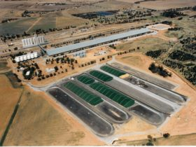 CBH Wheat Storage and Transfer Depot, Merredin, Western Australia