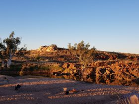 Coates Wildlife Tours, Canning Vale, Western Australia