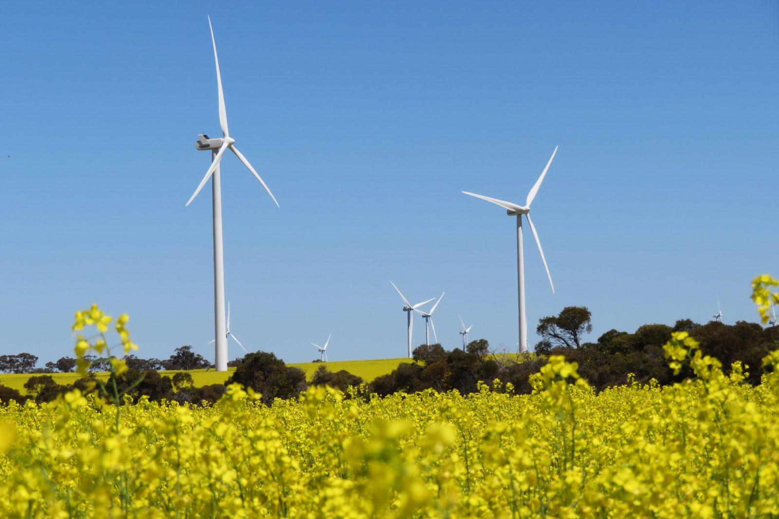 Collgar Wind Farm, Merredin, Western Australia