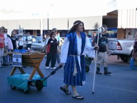 Lion's Christmas Pageant and Night Markets, Collie, Western Australia