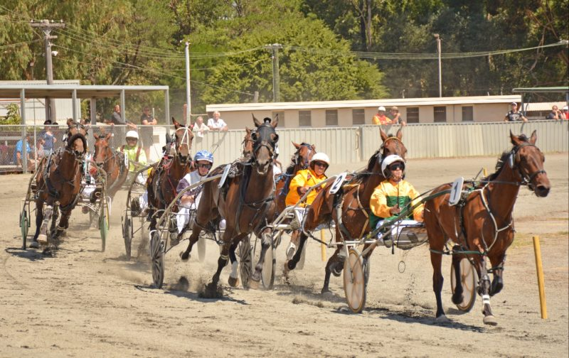 Collie Harness Racing, Collie, Western Australia