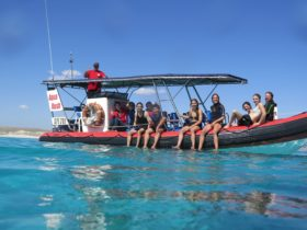 Coral Coast Tours, Coral Bay, Western Australia