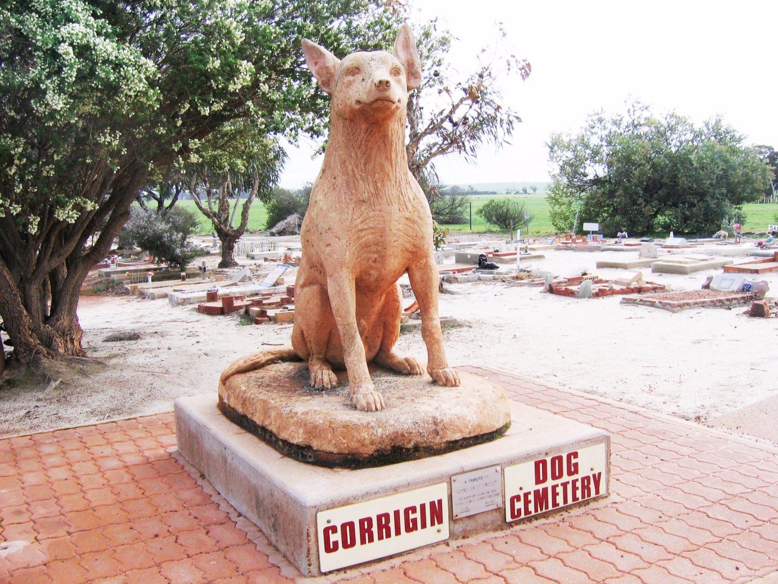Corrigin Dog Cemetery, Corrigin, Western Australia