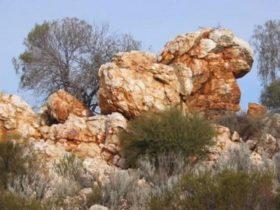 Credo Conservation Park, Western Australia