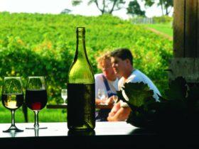 Cullen Wines, Cowaramup, Western Australia