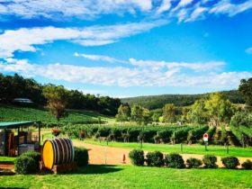 d'Vine Wine Tours, Karrinyup, Western Australia