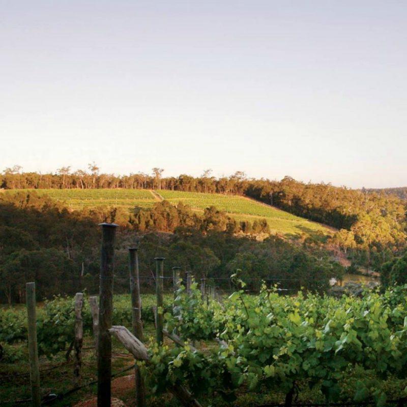 Darlington Estate Winery and Restaurant, Darlington, Western Australia