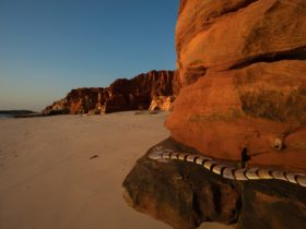Desert River Sea: Portraits of the Kimberley The Exhibition Experience