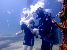 Dive Busselton Jetty, Busselton, Western Australian