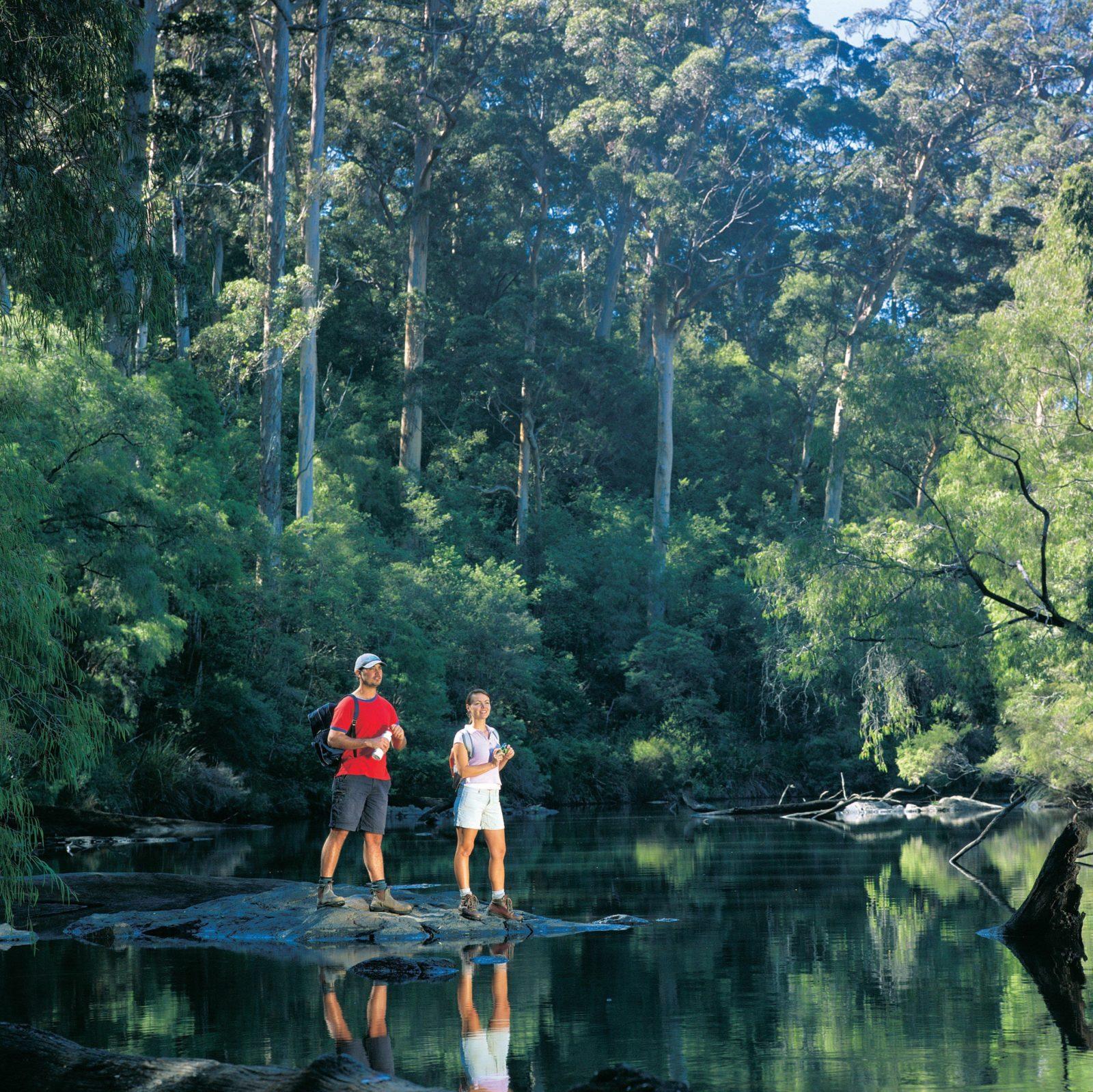 Warren National Park, Western Australia