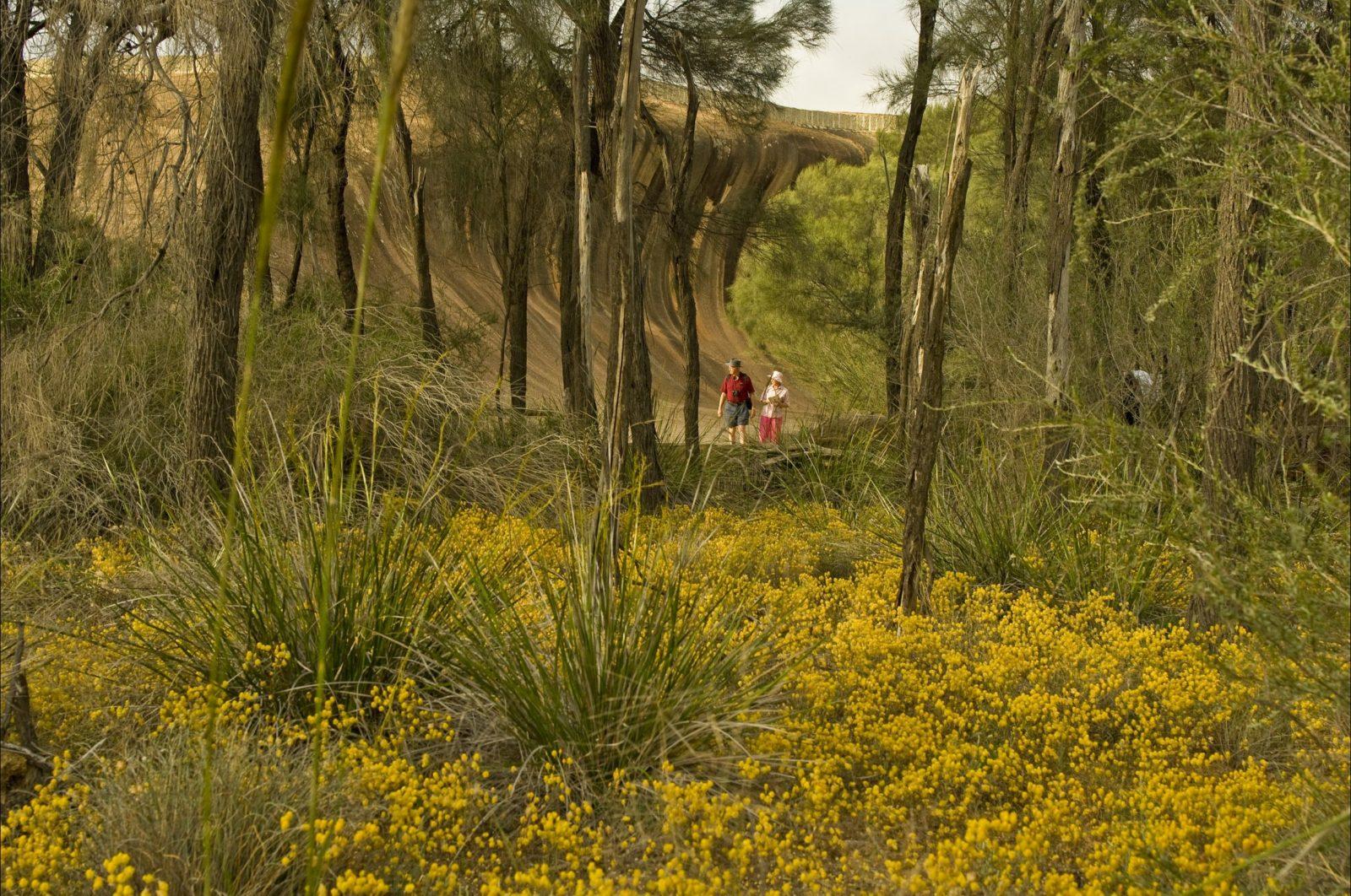 Dragon Rocks Nature Reserve, Mount Sheridan, Western Australia