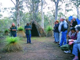 Dryandra, Western Australia