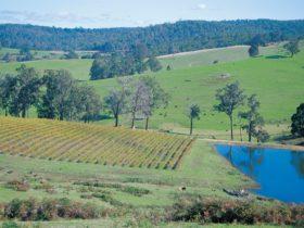 Farmlands in the Ferguson Valley