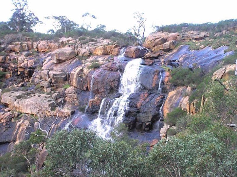 Ellis Brook Valley Reserve, Martin, Western Australia